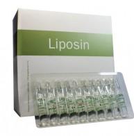 liposin_678af3da8fdd2ffc74d53fdffa84096f